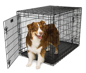 a-heavy-duty-crate-necessary-for-big-dogs